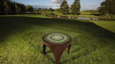 Winning design, Emerging Section Frances Fraser: Time Table grass, lawn, property, table, tree, brown