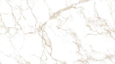 Entzo - Tabla - Entzo - Tabla - branch, texture, tree, white