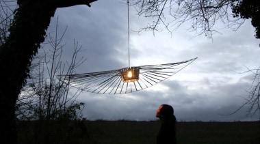VERTIGO is an enveloping lamp that creates a atmosphere of earth, branch, cloud, evening, morning, phenomenon, plant, sky, sunlight, tree, wing, gray, black
