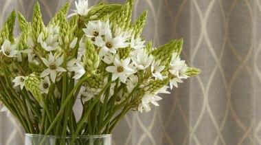 Harrisons Curtains - Harrisons Curtains - cut flowers cut flowers, flora, floral design, floristry, flower, flower arranging, flower bouquet, flowerpot, plant, vase, gray, brown
