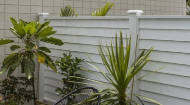 theblock2014058.jpg - theblock2014058.jpg - arecales | fence | arecales, fence, flower, outdoor structure, palm tree, plant, tree, window, gray