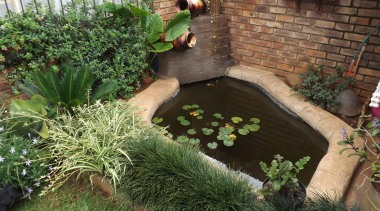 Decocrete 21 - Decocrete_21 - backyard | body backyard, body of water, garden, grass, herb, landscaping, outdoor structure, plant, pond, yard, brown, green