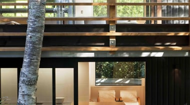 Remuera, Auckland - Glade House - architecture   architecture, home, house, interior design, window, wood, black