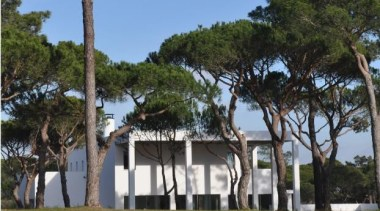 San Lorenzo House, Quinta do Lago, Portugalde Blacam arecales, palm tree, plant, property, tree, black
