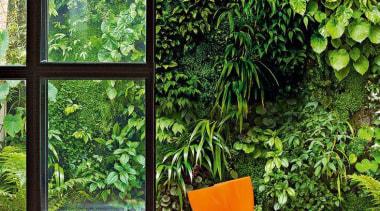 Living Wall - Vertical Garden - flowerpot | flowerpot, home, house, houseplant, interior design, plant, tree, window, green, white