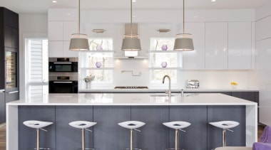 Erin Pitts - Blanco Zeus Extreme - Erin cabinetry, countertop, cuisine classique, interior design, kitchen, product design, gray