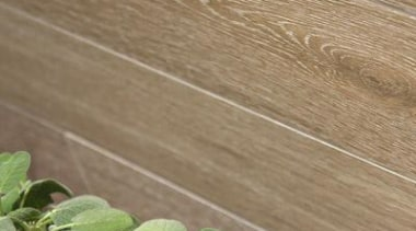 Bioplank noisette interior wall tile. - Bioplank - grass, leaf, plant, wood, brown