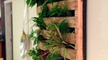 Living Wall - Vertical Garden - flora | flora, floral design, floristry, flower arranging, flowerpot, herb, plant, orange