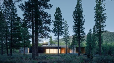 Faulkner Architects, CaliforniaSee more of this project architecture, biome, cottage, forest, home, house, landscape, property, real estate, sky, tree, black, teal