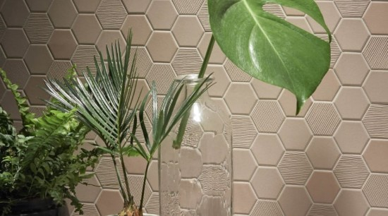 Beton Still Hex Mosaic brings something special to flowerpot, houseplant, interior design, leaf, plant, wall, gray, brown