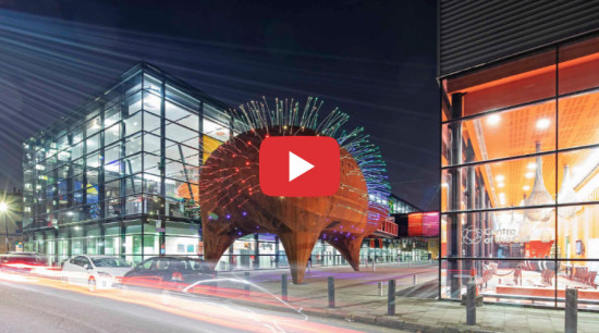 Events venue that's undeniably different - architecture | architecture, city, dinosaur, blue