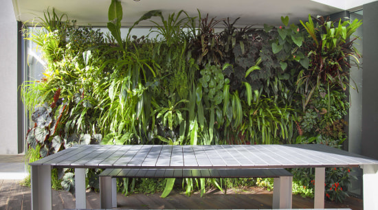 What you need to know about greening your architecture, bench, botany, furniture, hardwood, house, outdoor bench, outdoor furniture, outdoor table, plant, property, real estate, room, table, gray
