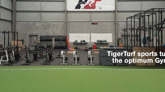 The easy to maintain TigerTurf surfaces means no grass, net, player, sport venue, sports, stadium, team sport, gray, green