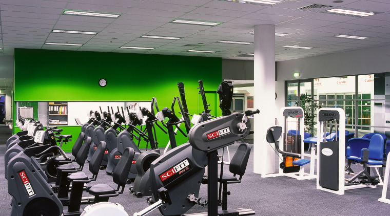 Gym room with rows of equipment, green wall, gym, leisure, room, sport venue, structure, gray