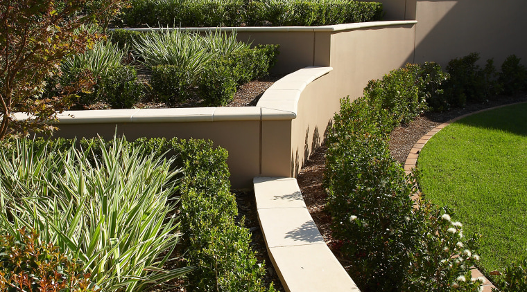 view of the plants and small trees  architecture, backyard, estate, facade, garden, grass, home, house, landscape, landscaping, outdoor structure, plant, property, real estate, residential area, villa, walkway, yard, brown