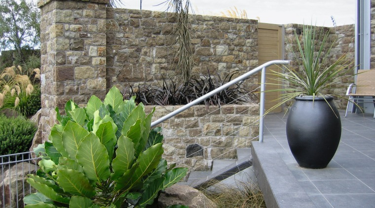 A view of some landsaping by Bridgeford Landscapes. agave, arecales, flowerpot, landscaping, plant, wall, gray