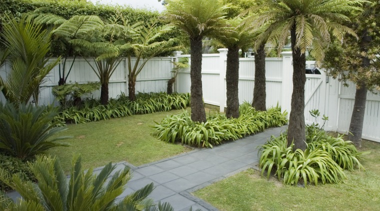 A view of a garden with lighting which arecales, backyard, estate, garden, grass, landscape, landscaping, lawn, outdoor structure, palm tree, plant, property, real estate, tree, vegetation, walkway, yard, brown, green