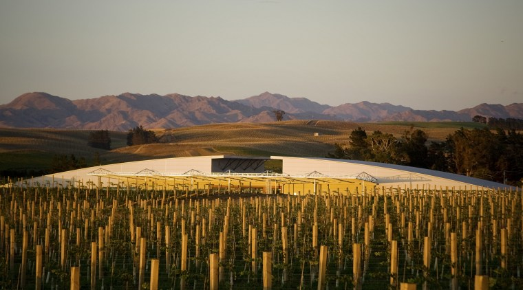 Exterior view of the Yealands Estate winery which agriculture, evening, field, hill, landscape, morning, mountain, plain, reflection, rural area, sky, sunlight, tree, gray, brown