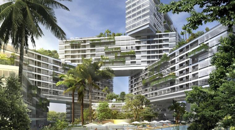 Interlace Conceptual arecales, building, condominium, corporate headquarters, estate, metropolitan area, mixed use, palm tree, property, real estate