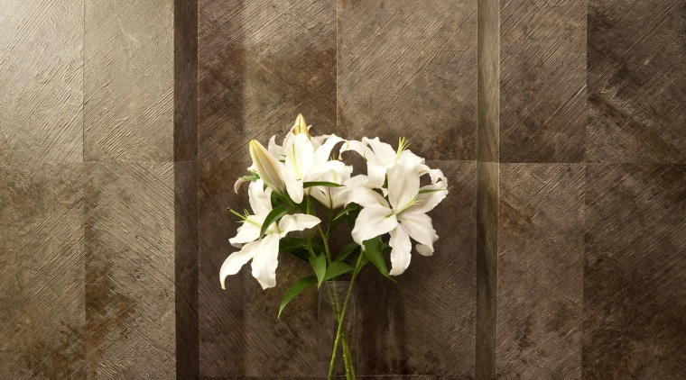 Brown wall with inset shelf and vase of floristry, flower, light fixture, still life, still life photography, brown