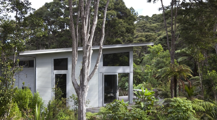 View of contemporary home surrounded by trees. architecture, cottage, home, house, jungle, plant, property, rainforest, real estate, tree, brown