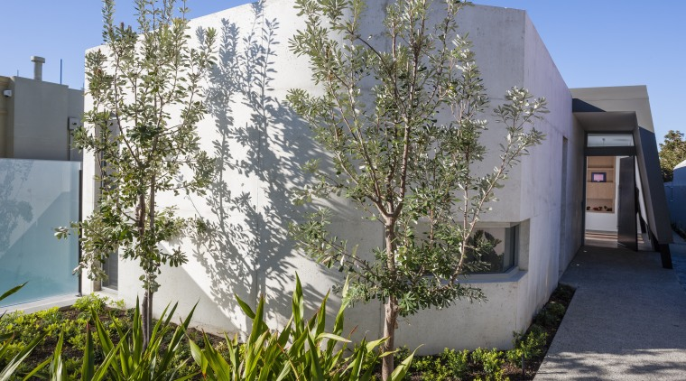 View of side house. architecture, facade, home, house, plant, property, real estate, residential area, tree, gray