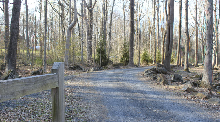 Seen here is the entrance to the house forest, path, road, state park, trail, tree, wood, woodland, gray