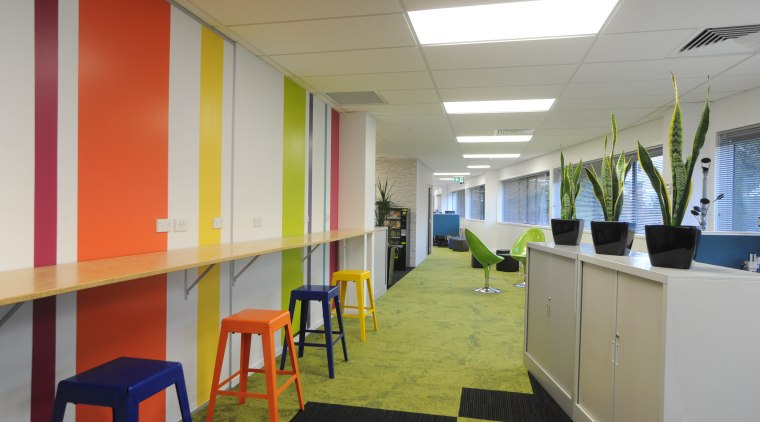 This 20m wall in the new Auckland office ceiling, interior design, office, gray