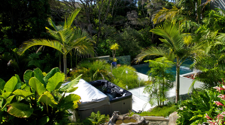 The existing spa pool was moved to provide arecales, botanical garden, estate, garden, green, house, landscape, landscaping, leaf, nature, palm tree, plant, real estate, resort, sky, tree, tropics, vegetation, water, teal