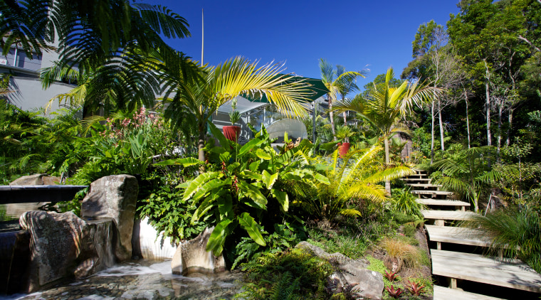 Designed by Mark Read, Natural Habitats, this garden arecales, botanical garden, estate, flora, garden, landscape, nature, palm tree, plant, real estate, resort, tourist attraction, tree, tropics, vegetation, water, brown