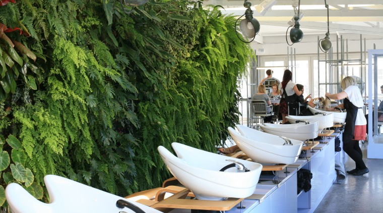 A green wall such as this one in interior design, plant, restaurant, tree, green