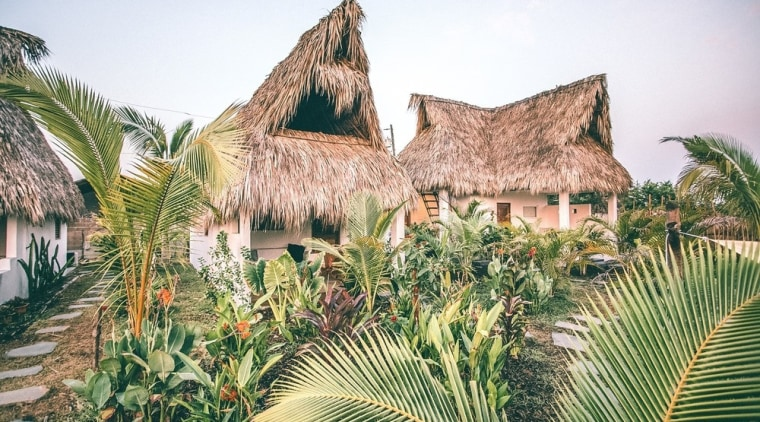 The lush gardens that permeate Swell inspire an architecture, arecales, attalea speciosa, building, hut, landscape, palm tree, plant, tree, tropics, vegetation, white