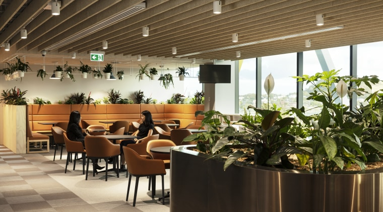 Plantings are an integral and appropriate part of architecture, building, café, cafeteria, ceiling, design, floor, flooring, furniture, houseplant, interior design, lobby, office, plant, real estate, restaurant, room, brown, black