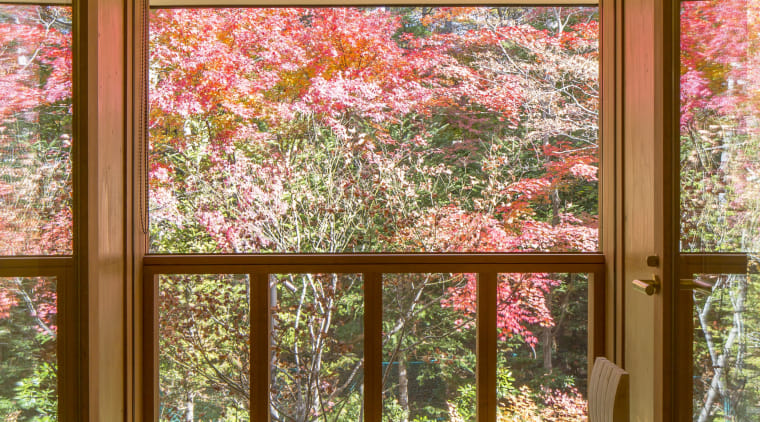 Shishi-iwa balcony views. - Shishi-iwa House, designed by architecture, blossom, botany, building, ceiling, cherry blossom, door, flower, furniture, home, house, interior design, plant, room, tree, window, woody plant, brown