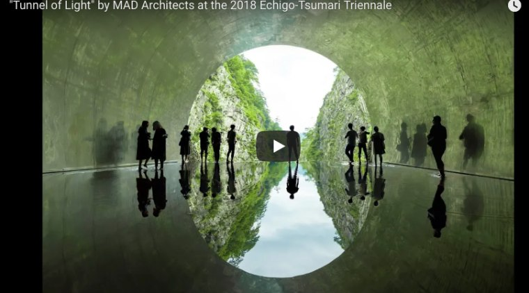 Tunnel Of Light Video biome, computer wallpaper, green, nature, organism, reflection, symmetry, text, tree, water, world, green