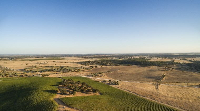 From up above, it appears you're just looking aerial photography, agriculture, atmosphere, atmosphere of earth, cloud, ecoregion, ecosystem, field, grass, grass family, grassland, hill, horizon, landscape, morning, plain, prairie, rural area, sky, steppe, brown