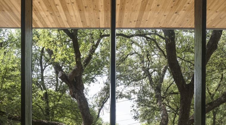 Another view of the wood-lined soffit house, outdoor structure, plant, tree, window, wood, brown, black