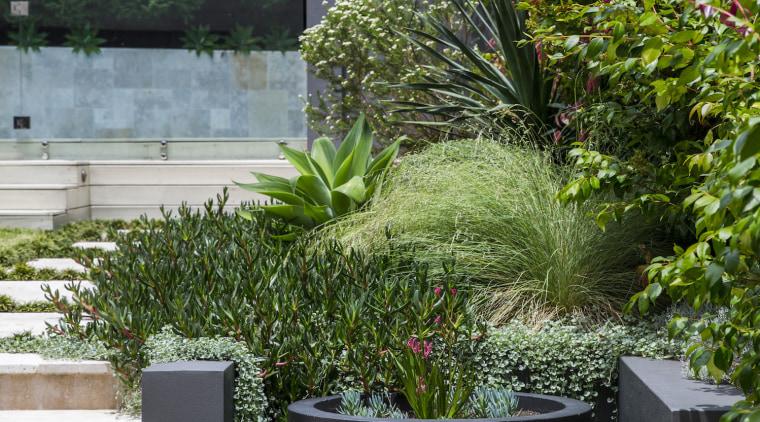 Garden Project By Landart Landscapes Photo By Jason backyard, courtyard, flowerpot, garden, grass, houseplant, landscape, landscaping, outdoor structure, plant, shrub, tree, walkway, yard, brown, gray