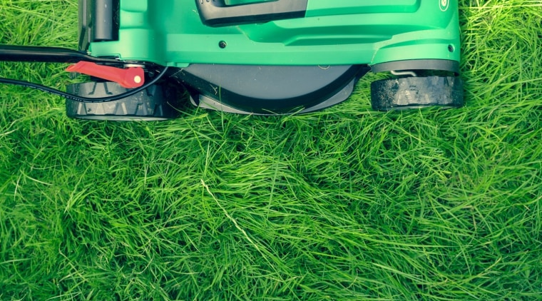 5 Reasons Your Lawn Doesn't Look the Way green