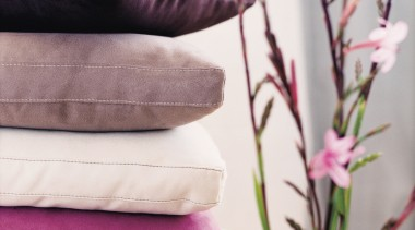 In modern commercial interiors, an eye-catching furnishing scheme flower, petal, purple, textile, white