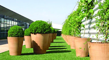 Commercial landscape artificial turf, backyard, flowerpot, garden, grass, grass family, landscaping, lawn, plant, shrub, tree, yard, green