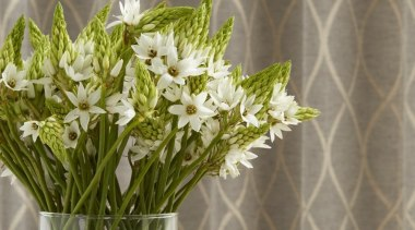 Harrisons Curtains cut flowers, flora, floral design, floristry, flower, flower arranging, flower bouquet, flowerpot, plant, vase, gray, brown
