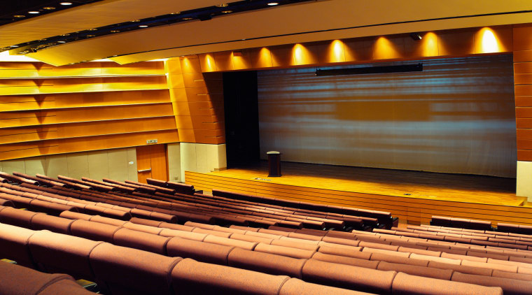 view of the plenary theatre walls that comprise auditorium, conference hall, interior design, musical instrument accessory, performing arts center, theatre, black, brown