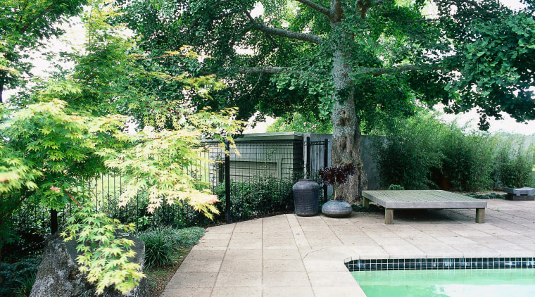 sandstone pavers surround the pool, planting connects the backyard, courtyard, estate, garden, grass, home, house, landscape, landscaping, lawn, outdoor structure, plant, property, real estate, tree, walkway, yard, green
