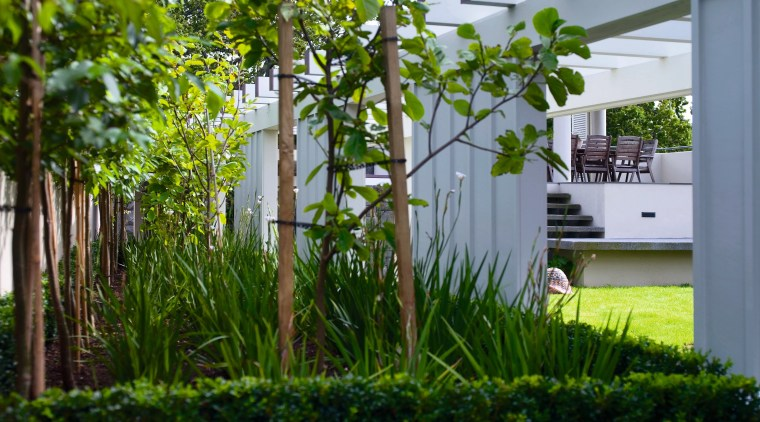 A view of a garden landscaped by Space courtyard, garden, grass, grass family, house, plant, shrub, tree, yard, gray, brown