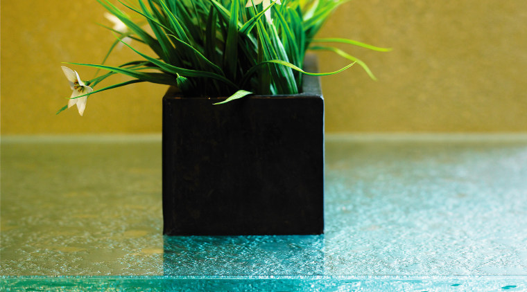 View of these glass countertops that are works flowerpot, green, plant, still life photography, black