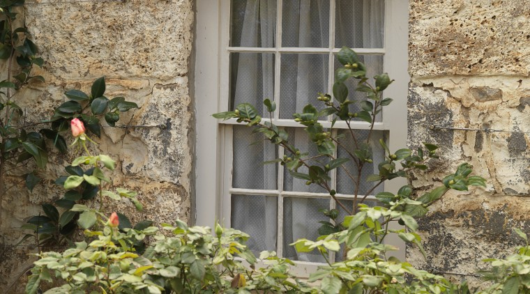 Exterior view of a window in this colonial-styled facade, flower, home, house, plant, tree, window, brown, orange