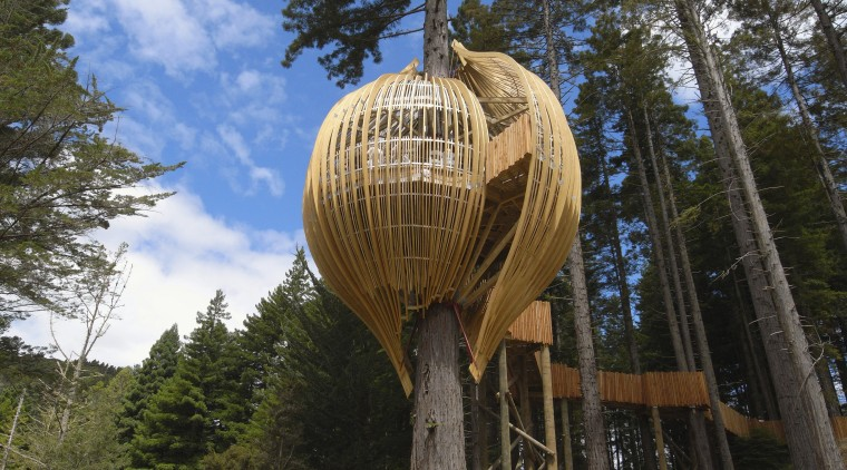 Image of the Yellow Treehouse restaurant which has outdoor structure, plant, tree, tree house, black, brown
