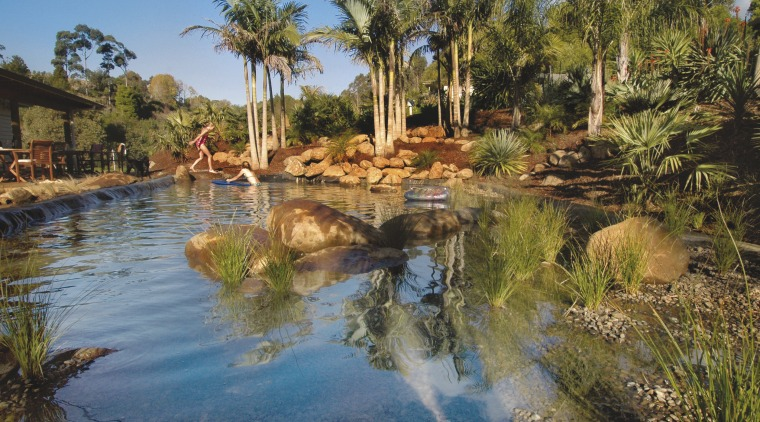 View of a natural swimming pool from Palmco arecales, landscape, palm tree, reflection, resort, sky, swimming pool, tree, tropics, vegetation, water, water feature, water resources, brown