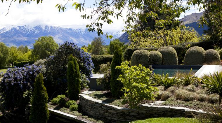 View of landscaping. botanical garden, estate, garden, grass, landscape, landscaping, lawn, leaf, nature, plant, shrub, tree, vegetation, brown